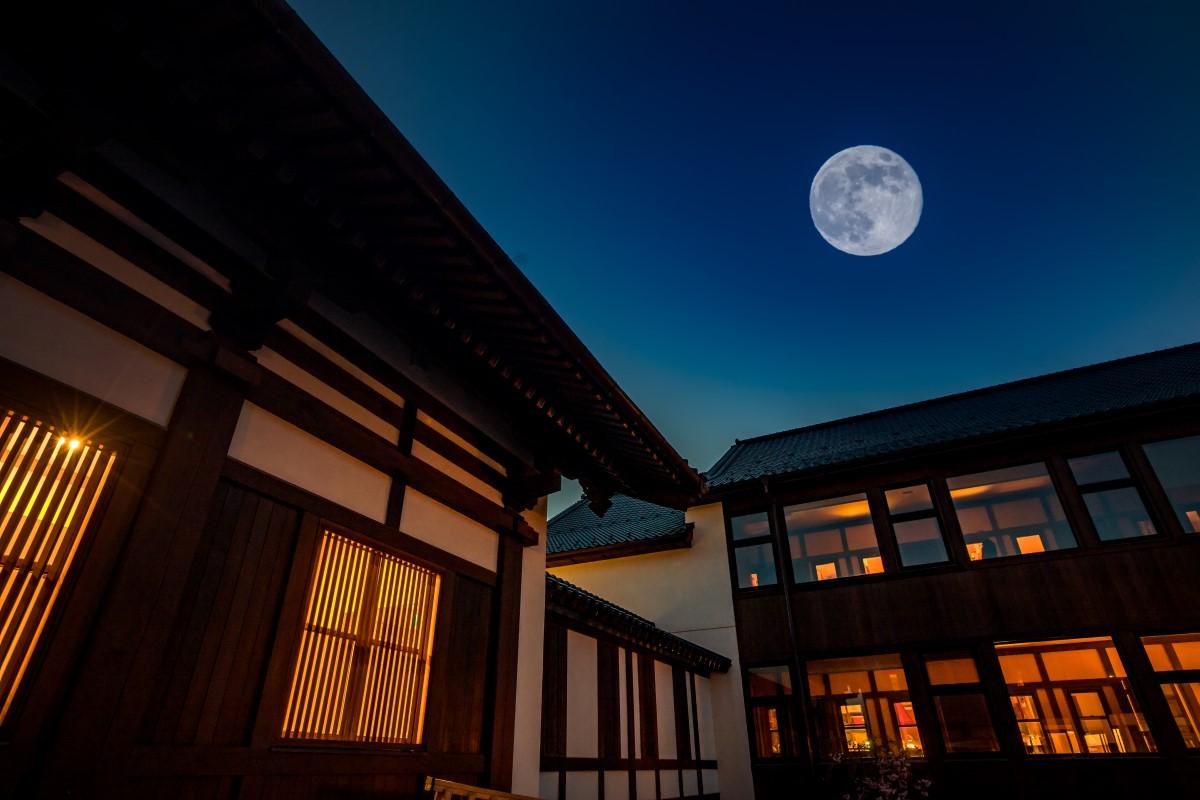 照片提供:GEBIS傳燈寺