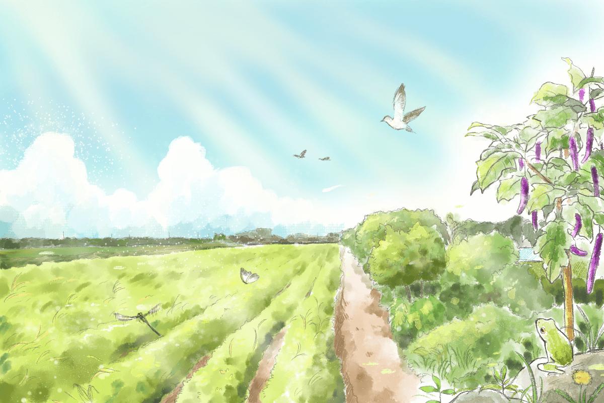 【師心我心】黃順得:承載慈心的朴子農場