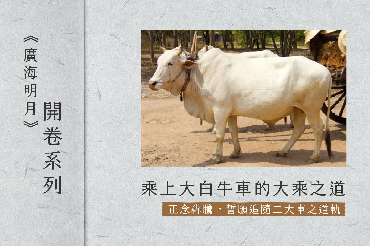 【開卷系列】乘上大白牛車的大乘之道