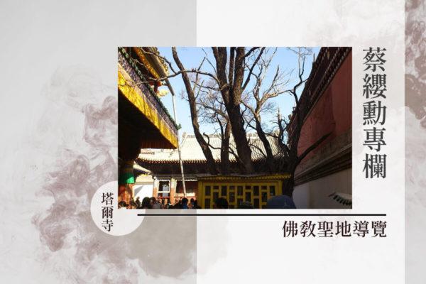 蔡纓勳專欄|滴血化作菩提樹,禮塔爾寺栴檀樹記