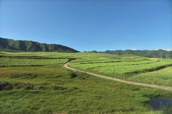 離開夏瓊寺的山路,正是當年大師走過的山路。照片提供:蔡纓勳